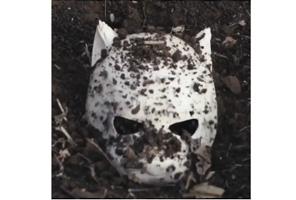 Cro vergräbt seine Maske
